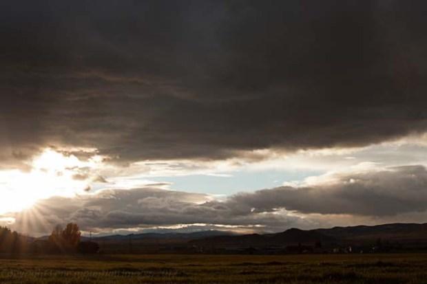sun on the pasture